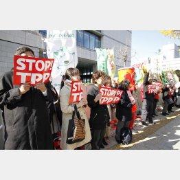 TPP11は12月30日に発効(C)日刊ゲンダイ