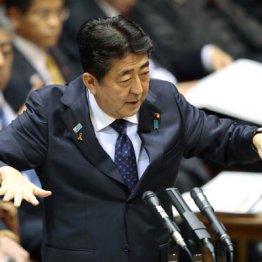 """入管法改正紛糾 極右の首相が""""移民""""旗振りのいかがわしさ"""