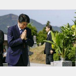 墓前で手を合わせる安倍首相(C)共同通信社