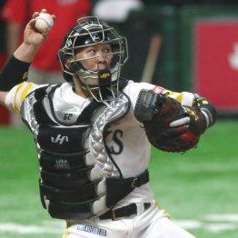 日米野球でもマスクの甲斐に「メジャーでも通用」と太鼓判