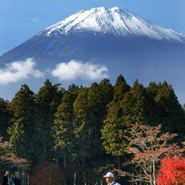 初日は富士山もよく見えた