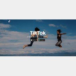 TikTok(ティックトック)公式HP