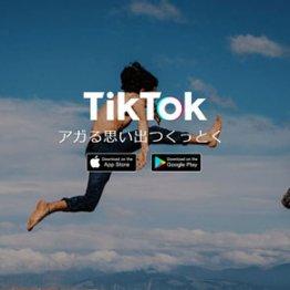 TikTokとパートナー契約 「ベクトル」の広告配信が絶好調