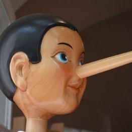 ピノキオとは逆…人間はウソをつくと鼻が縮むことが判明!