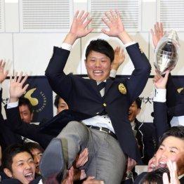 DeNA1位・上茶谷は「真面目で努力家」 指導者3人が明かす