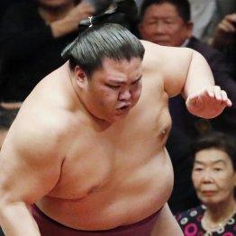 本来、押し相撲の力士