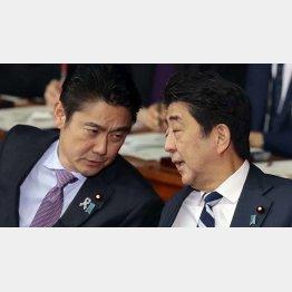 ドサクサに紛れて…(安倍首相と山下法相)/(C)日刊ゲンダイ
