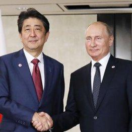 プーチン大統領(右)と握手する安倍首相