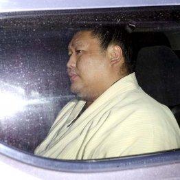 付け人殴打…加害者となった貴ノ岩は厳罰処分前に引退決意