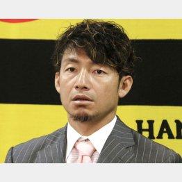 成績関係なしに4億円(鳥谷)/(C)共同通信社