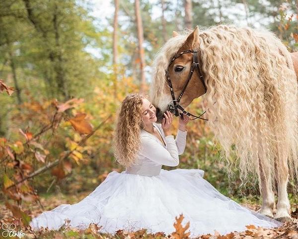 まるでラプンツェル 髪の長い馬がインスタで大人気日刊ゲンダイdigital