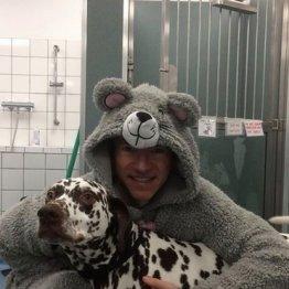脚が悪い犬を手術…獣医が「ネズミの着ぐるみ姿」なワケ