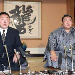 貴ノ岩暴行事件の後始末で男を上げた千賀ノ浦親方の素顔