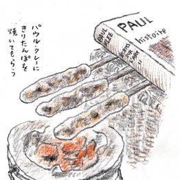 「きりたんぽ鍋」は秋田・三関産のセリを入れてひと煮立ち