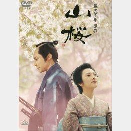 DVD「山桜」 販売元:バンダイナムコアーツ