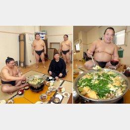 稽古後に鍋を囲んで(中央は高田川親方)、右はちゃんこ長の櫻さん(C)日刊ゲンダイ