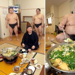 稽古後に鍋を囲んで(中央は高田川親方)、右はちゃんこ長の櫻さん