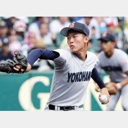 及川雅貴投手は182センチ74キロ・左投左打(C)日刊ゲンダイ