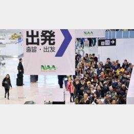 旅行客らで混雑する成田空港の出発ロビー(C)共同通信社