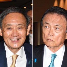 """今度は消費税で…""""菅vs麻生""""キングメーカー争いが始まった"""