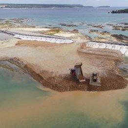 土砂が投入された辺野古の海