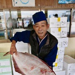 肉厚で脂が乗った冬が旬 茨城で常磐ヒラメを味わう