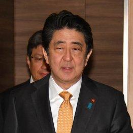 「外交の安倍」どころか疫病神 日露、日韓、日米の無残