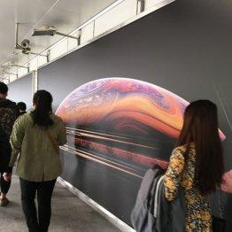 個人情報収集は朝飯前…国家の監視カメラに断念する中国人