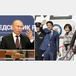何をしに…プーチン露大統領(左、=ロイター)は手ぐすね引いている(C)共同通信社