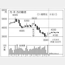 カネカ(C)日刊ゲンダイ