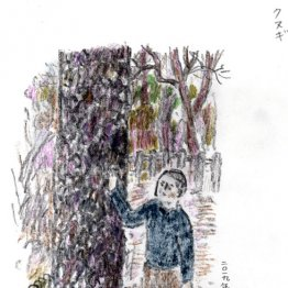 今は亡き友人鈴木るみこさんの思い出を共有する「クヌギ」