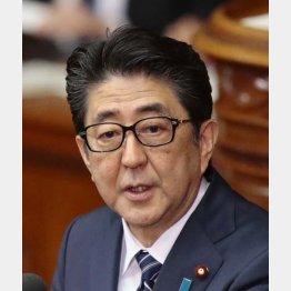 """""""リベラル派""""の父親にあやかりたい?(C)日刊ゲンダイ"""