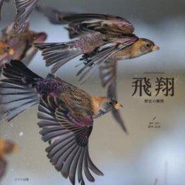 「飛翔 野生の瞬間」真木広造撮影・監修
