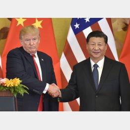 2017年 共同記者発表で、硬い表情のまま中国の習近平国家主席(右)と握手するトランプ米大統領(C)共同通信社