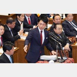 小泉進次郎衆議院議員(C)日刊ゲンダイ