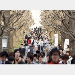 大学の系列校は学費も高額(慶應義塾大学の日吉キャンパス)/(C)日刊ゲンダイ