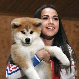 ロシアはドーピング大国…ザギトワの犬は大丈夫か?