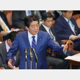 国会に降臨(C)日刊ゲンダイ