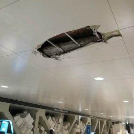 豊洲市場で天井崩落 基準130倍超ベンゼン検出に続く大惨事