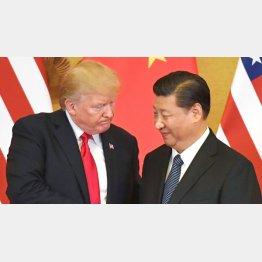 米中貿易戦争に着地点はあるのか…(トランプ米大統領=左と中国の習近平総書記)/(C)共同通信社