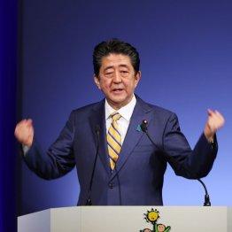 """安倍首相「自衛隊募集」発言 学者から""""憲法違反""""の指摘も"""