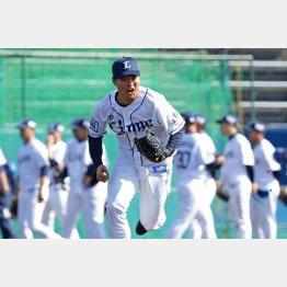 投げるボールはチームでもトップレベルの松本(C)日刊ゲンダイ