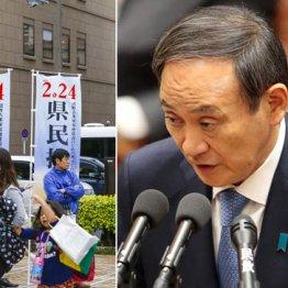 大マスコミはスルーなのか 菅官房長官の沖縄民意無視宣言