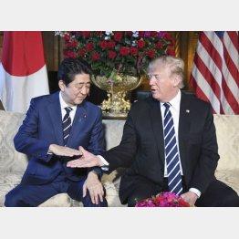 会談でトランプ米大統領と握手する安倍首相(C)共同通信社