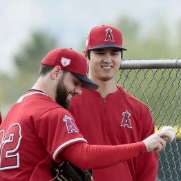 チームメートと笑顔で話すエンゼルス・大谷(右)=テンピ
