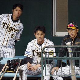 矢野監督が守備力評価 阪神ルーキー2人に開幕スタメンの目