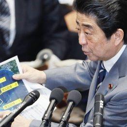 辺野古沿岸部の地図を手に答弁する安倍首相