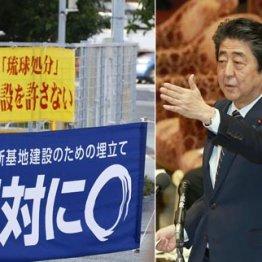 沖縄県民投票 安倍政権はこの圧倒的民意を無視できまい