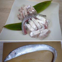 """タチウオは""""刃""""に注意 脂が煮えて銀色の表皮がふつふつと"""