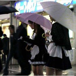 雨の中チラシを配る女の子たち(C)日刊ゲンダイ